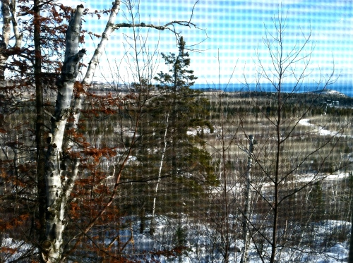 View from Davids Cabin